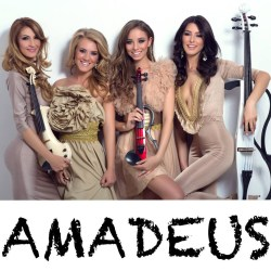 Pret Concert Nunta Botez Amadeus Image